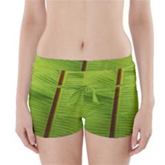 Ensete leaf Boyleg Bikini Wrap Bottoms