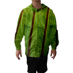 Ensete leaf Hooded Wind Breaker (Kids)