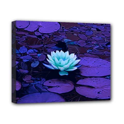 Lotus Flower Magical Colors Purple Blue Turquoise Canvas 10  x 8