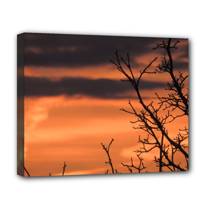 Tree branches and sunset Deluxe Canvas 20  x 16