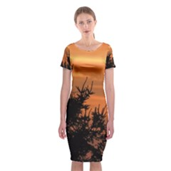 Christmas tree and sunset Classic Short Sleeve Midi Dress