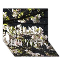 Blooming Japanese Cherry Flowers You Are Invited 3d Greeting Card (7x5)