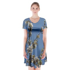 White Cherry flowers and blue sky Short Sleeve V-neck Flare Dress