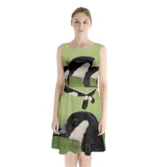 Goose bird in nature Sleeveless Chiffon Waist Tie Dress