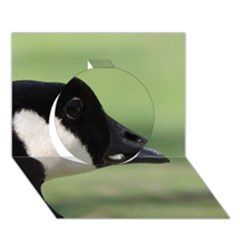 Goose, Black And White Circle 3d Greeting Card (7x5)