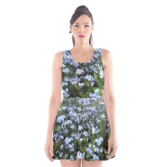 Blue Forget-me-not flowers Scoop Neck Skater Dress
