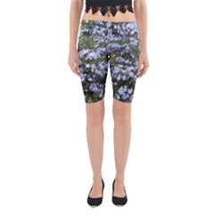 Little Blue Forget-me-not flowers Yoga Cropped Leggings