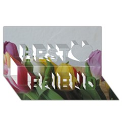Colorful Bouquet Tulips Best Friends 3d Greeting Card (8x4)