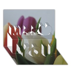 Colored by Tulips Miss You 3D Greeting Card (7x5)
