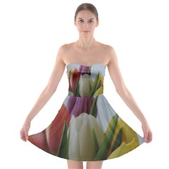 Colored by Tulips Strapless Bra Top Dress