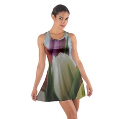 Colored by Tulips Cotton Racerback Dress