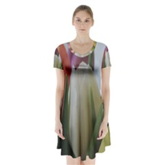 Colored by Tulips Short Sleeve V-neck Flare Dress