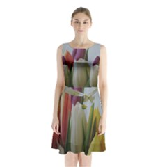 Colored by Tulips Sleeveless Chiffon Waist Tie Dress