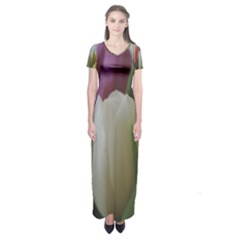 Colored By Tulips Short Sleeve Maxi Dress