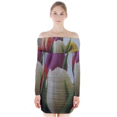 Colored by Tulips Long Sleeve Off Shoulder Dress