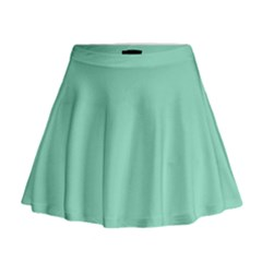 Mint Color Mini Flare Skirt
