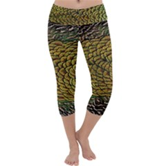 Peacock Bird Feather Color Capri Yoga Leggings