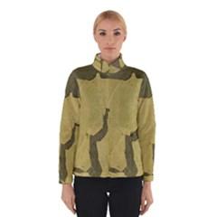 Stylish Gold Stone Winterwear