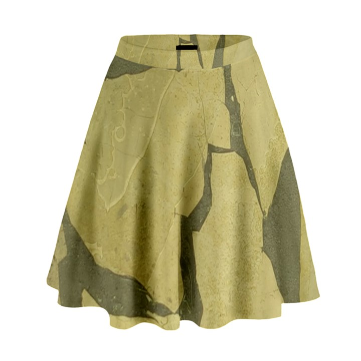 Stylish Gold Stone High Waist Skirt