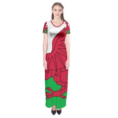 Flag Of Wales Short Sleeve Maxi Dress