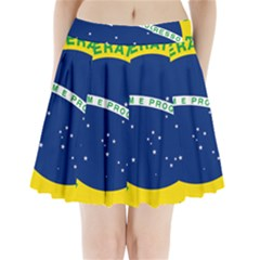 National Seal of Brazil  Pleated Mini Skirt