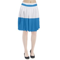 Flag Of Canton Of Lucerne Pleated Skirt