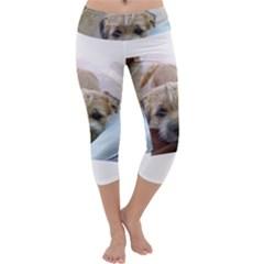 Border Terrier Begging Capri Yoga Leggings