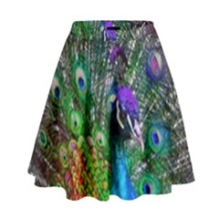 3d Peacock Pattern High Waist Skirt