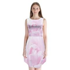 Pink rose Sleeveless Chiffon Dress