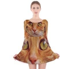 Cat Red Cute Mackerel Tiger Sweet Long Sleeve Velvet Skater Dress