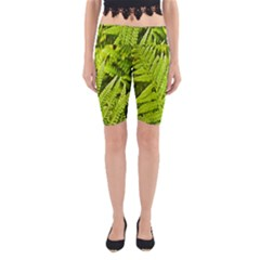 Fern Nature Green Plant Yoga Cropped Leggings