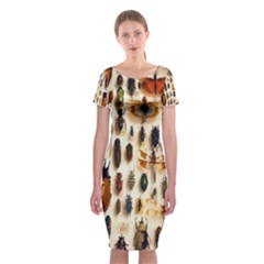 Insect Collection Classic Short Sleeve Midi Dress