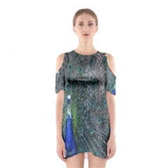 Peacock Four Spot Feather Bird Cutout Shoulder Dress