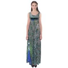 Peacock Four Spot Feather Bird Empire Waist Maxi Dress