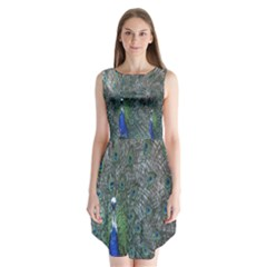 Peacock Four Spot Feather Bird Sleeveless Chiffon Dress