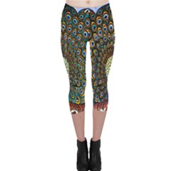 The Peacock Pattern Capri Leggings