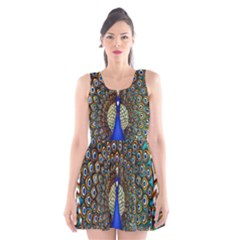 The Peacock Pattern Scoop Neck Skater Dress