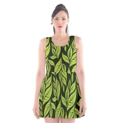 Palm Coconut Tree Scoop Neck Skater Dress