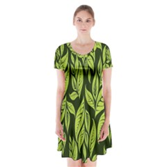 Palm Coconut Tree Short Sleeve V Neck Flare Dress