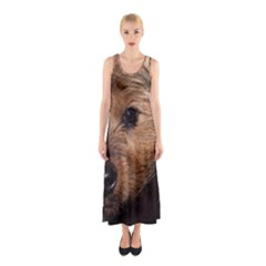 Norwich Terrier Chillin Sleeveless Maxi Dress