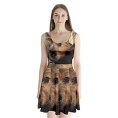 Norwich Terrier Chillin Split Back Mini Dress