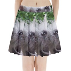 Chinese Crested Pleated Mini Skirt