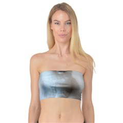 Ragdoll Kitten Bandeau Top