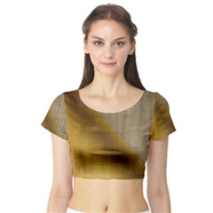 Plane Tissue Fold Fabric Network Short Sleeve Crop Top (Tight Fit)