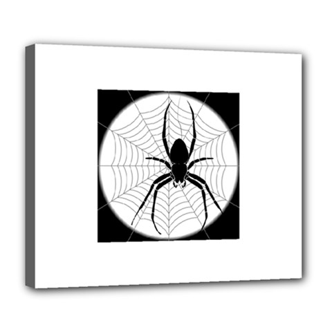 Spider Web Spider Web Insect Deluxe Canvas 24  x 20