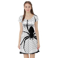Spider Web Spider Web Insect Short Sleeve Skater Dress