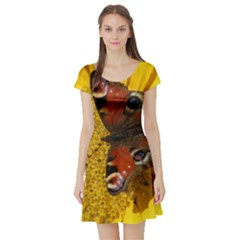 Yellow Butterfly Insect Closeup Short Sleeve Skater Dress