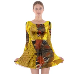 Yellow Butterfly Insect Closeup Long Sleeve Skater Dress