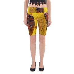 Yellow Butterfly Insect Closeup Yoga Cropped Leggings