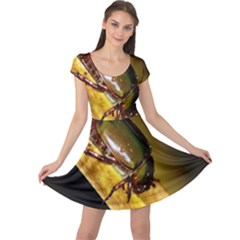 Insect  Cap Sleeve Dresses